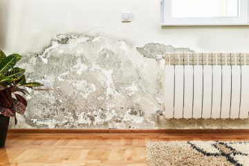 eliminiar humedades paredes interiores