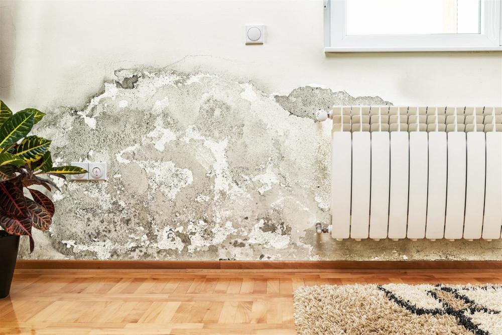 solucion humedad casa